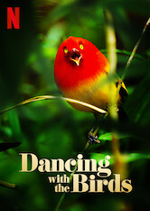 Search netflix Dancing with the Birds
